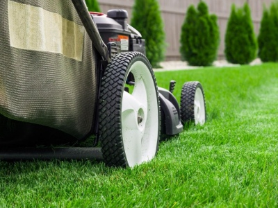 Essential Summer Lawn Care Projects