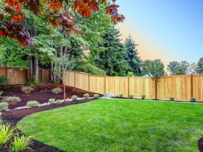 What You Need to Landscape Your Yard