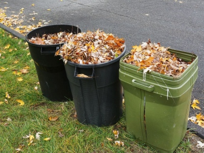 How to Properly Dispose of Yard Waste