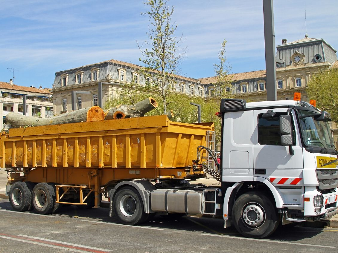 A Contractor's Guide to Renting a Dumpster for Projects